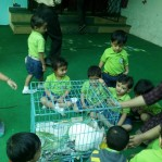 Rabbit visit in school